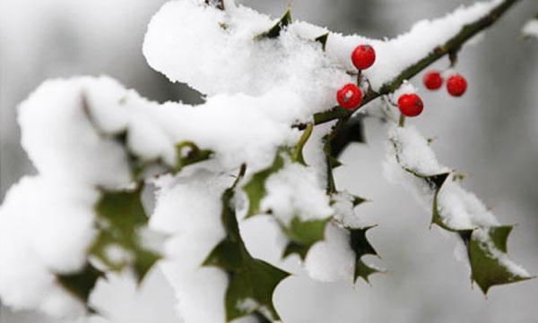 Il Capodanno nel comprensorio Dolomiti Superski