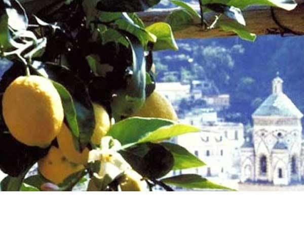 Amalfi, Positano, Ravello e Vietri sul Mare