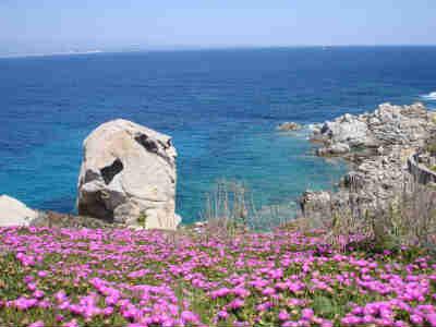 Sole e spiagge stupende della Sardegna