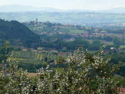 Week end in Umbria , museo dell'olio e del vino