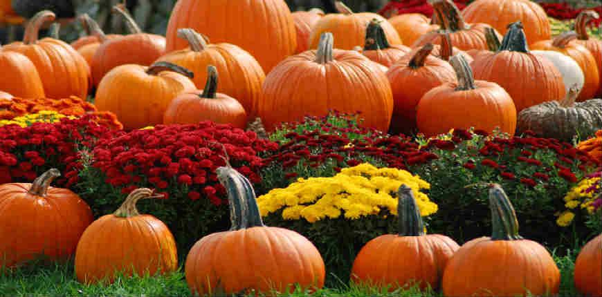 weekend di halloween